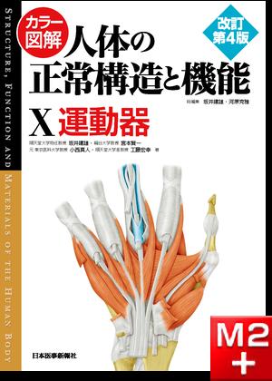 カラー図解 人体の正常構造と機能 第10巻 運動器