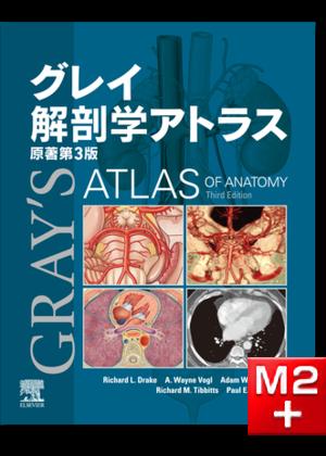グレイ解剖学アトラス 原著第3版