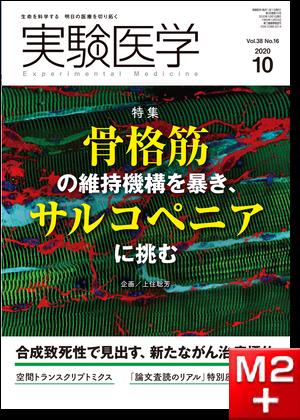 実験医学2020年10月号 Vol.38 No.16 骨格筋の維持機構を暴き、サルコペニアに挑む!