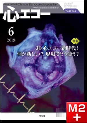 心エコー 2019年6月号(20巻6号)3D心エコー新時代! 何が新しい? 現場でどう使う?