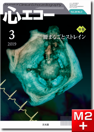 心エコー 2019年3月号(20巻3号)一冊まるごとストレイン