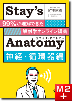 Stay'sAnatomy神経・循環器編 99%が理解できた解剖学オンライン講義