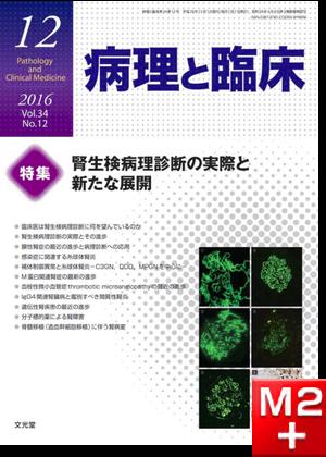 病理と臨床 2016年 12月号(34巻12号)腎生検病理診断の実際と新たな展開