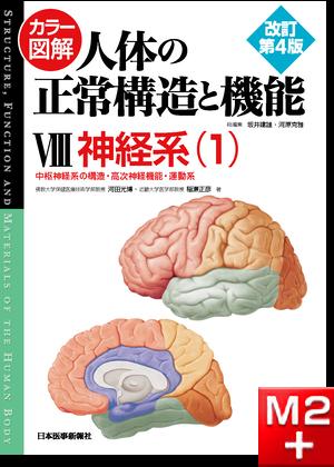 カラー図解 人体の正常構造と機能 第8巻 神経系(1) 第4版