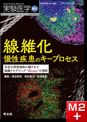 """実験医学増刊 Vol.38 No.12 線維化 慢性疾患のキープロセス~多彩な間質細胞が織りなす組織リモデリング""""fibrosis""""の理解"""