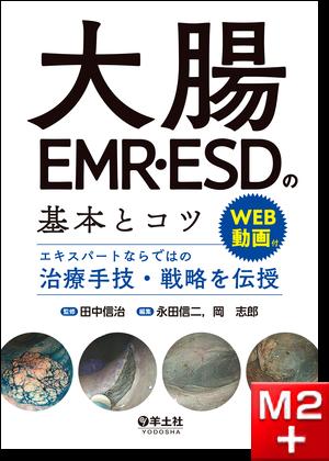 大腸EMR・ESDの基本とコツ ~エキスパートならではの治療手技・戦略を伝授~