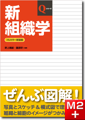 新組織学 第7版