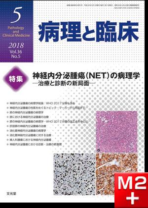 病理と臨床 2018年 5月号(36巻5号)神経内分泌腫瘍(NET)の病理学~治療と診断の新局面