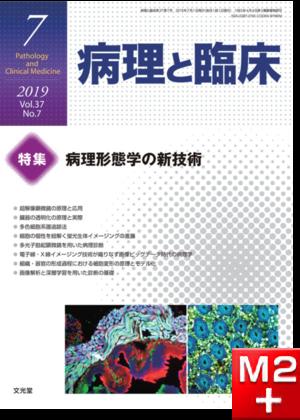 病理と臨床 2019年 7月号(37巻7号)病理形態学の新技術